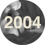 LEM2004_Ce