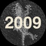 LEM2009_Ce